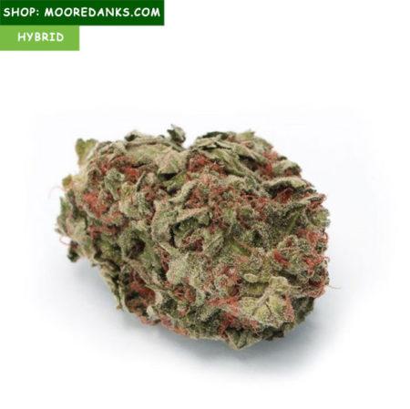 Buy-Skunk-1-strain-595x594