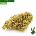 Bubble-Gum-marijuana-strain-595x595
