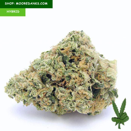 Cherry-Pie-Kush-strain