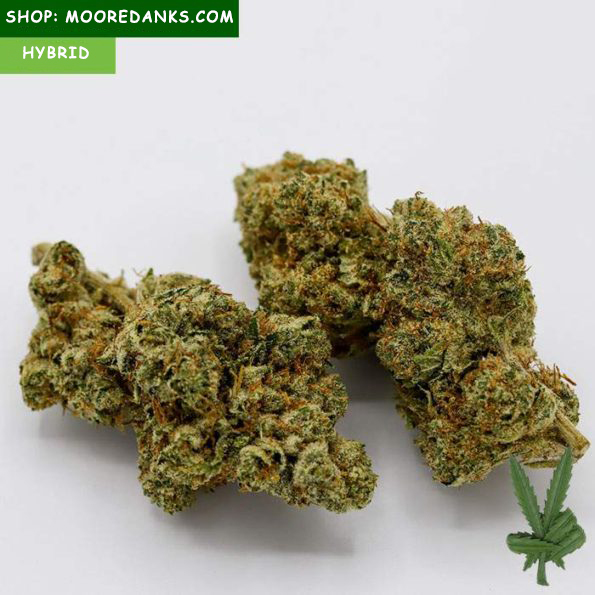 Fire-OG-for-sale-595×595