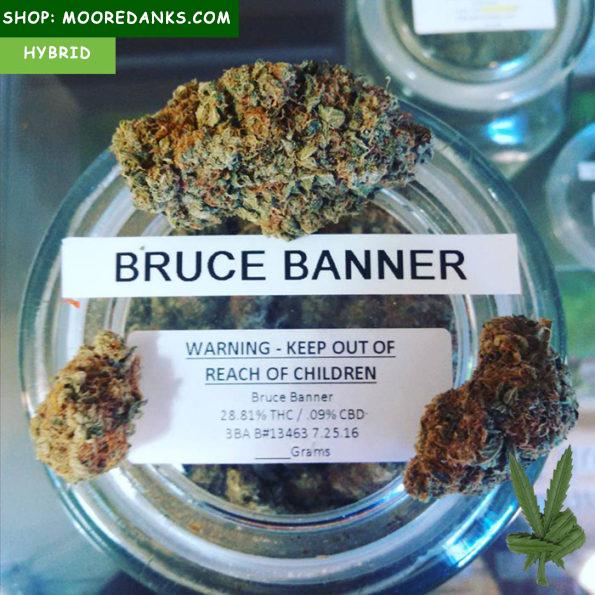 bruce-banner-strain-for-sale-595×595