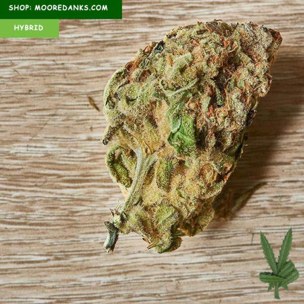 AK47-Weed-Strain