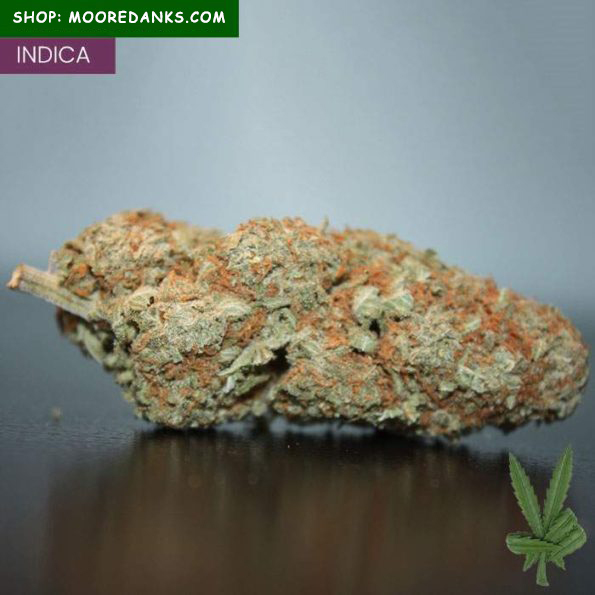 Afghan-Kush-for-sale-595×595
