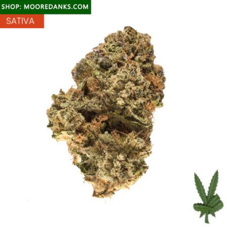 Alaskan-Thunder-Fuck-marijuana-Strain-595x595