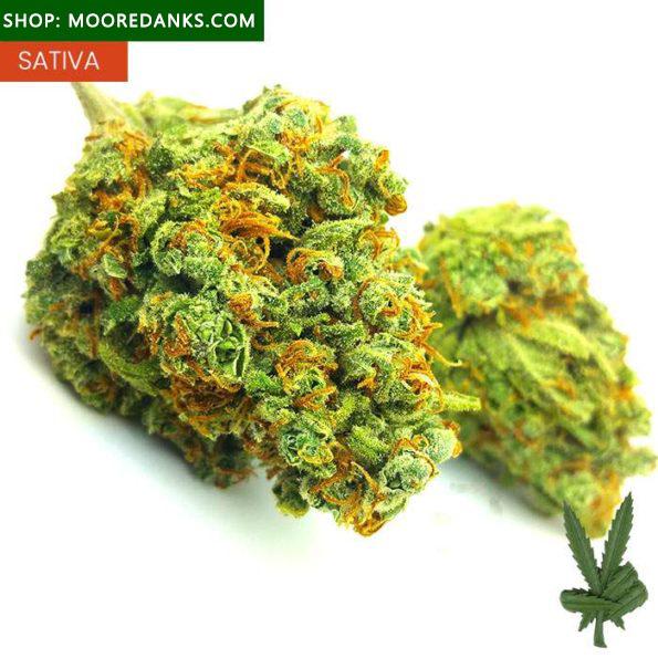 Cherry-Durban-Poison-595x595