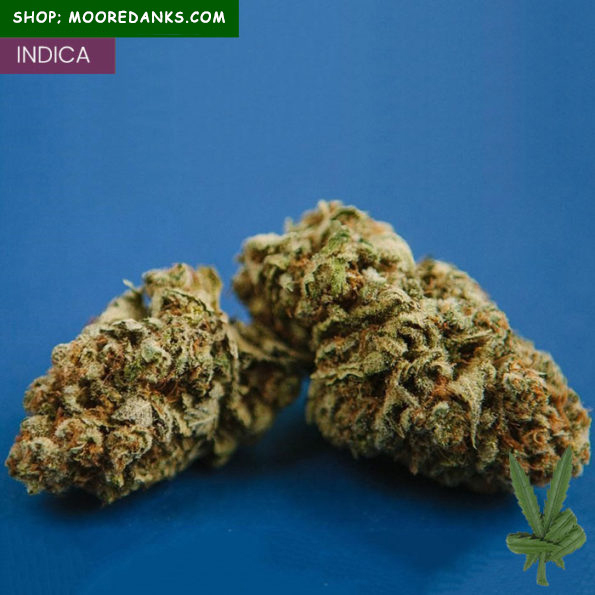 G13-strain-for-sale-595×595