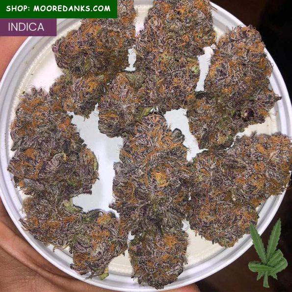 Grape-ape-weed-strain-595×595