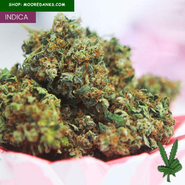 Northern-Lights-marijuana