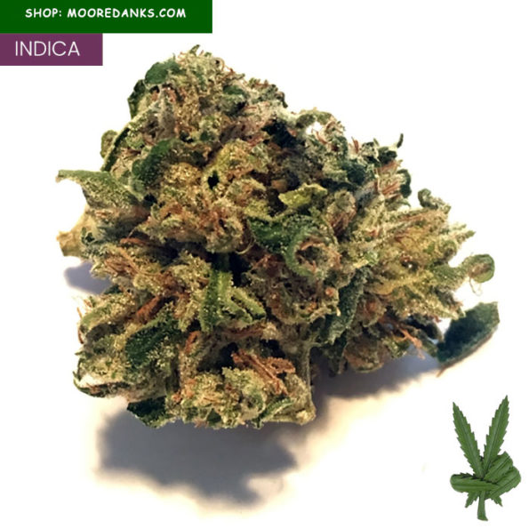Nova-OG-Kush-for-sale-1