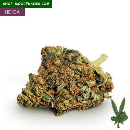 super-skunk-marijuana-strain-595x594